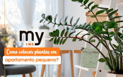 Como colocar plantas em apartamento pequeno?